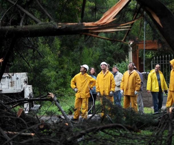 Fotos-MGP-Defensa-Civil-trabnjando-con-árboles-caídos-1-610x510
