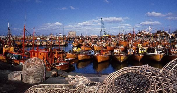 Denuncia Irregular Entrega De Permisos Pesqueros En La