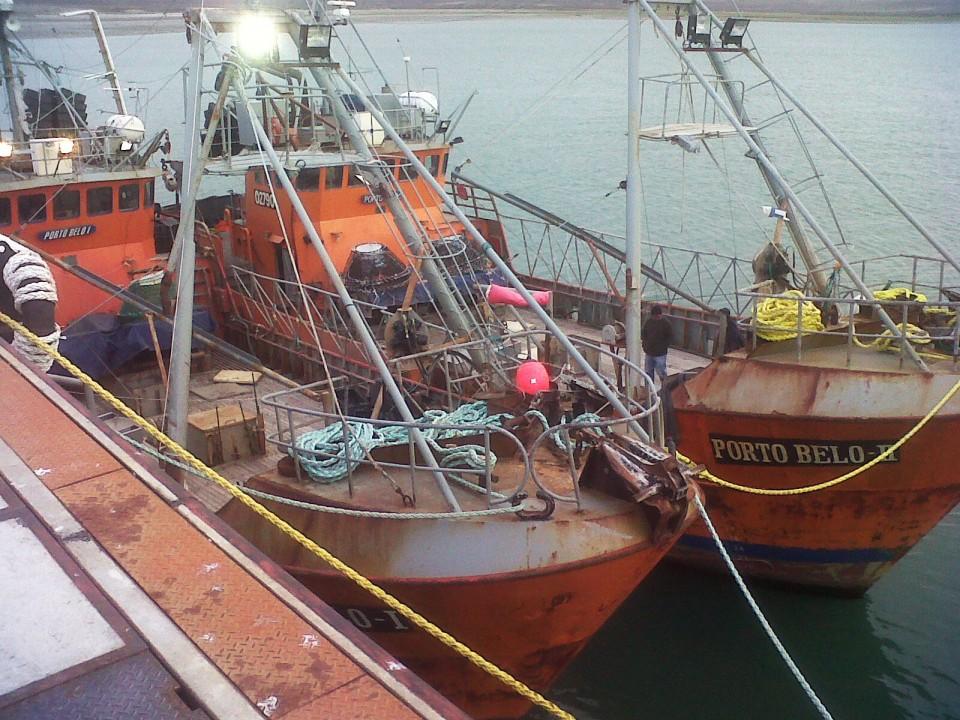 portobelos-960x700
