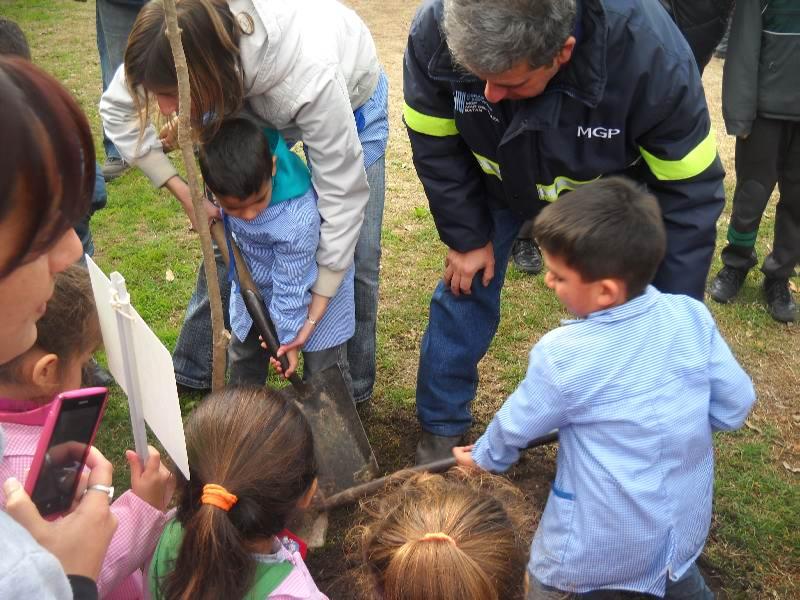 Fotos MGP - Plantacion de arboles en el Jardin N 5 - 1