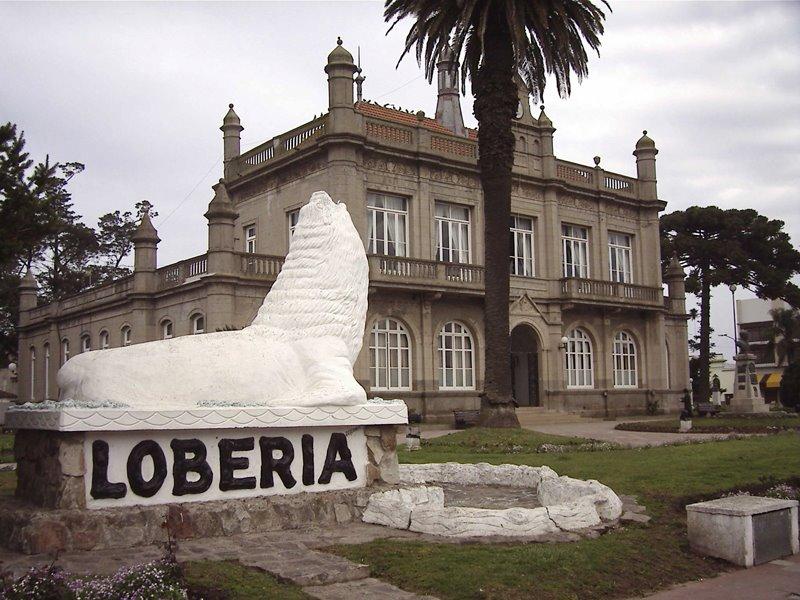 loberia
