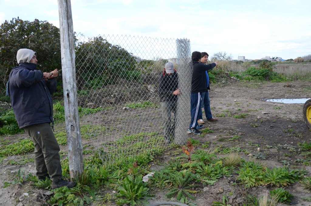 Fotos MGP - Alambrado de la Rserva del Puerto 1