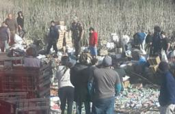 Indignante: saquearon pan lactal de un camión que volcó sobre ruta 2