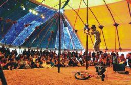 """La UCR pide buscar un espacio alternativo para el Circo """"La Audacia"""""""