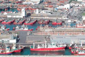 Incautaron 21 toneladas de merluza: iban de Comodoro a Mar del Plata