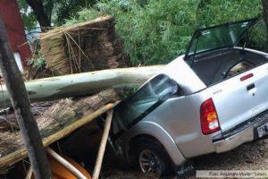 Proponen que la Nación priorice recursos y asistencias ante secuelas de temporales