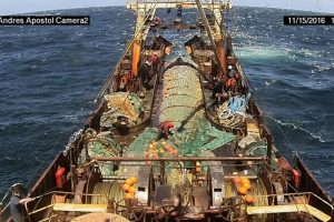 Más de una veintena de buques marplatenses ya operan con cámaras a bordo