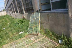 Saquean por tercera vez en el último mes, una escuela del barrio Cerrito Sur