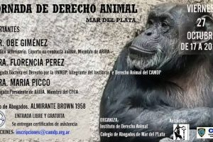 Se realizará en Mar del Plata la primera jornada de Derecho Animal