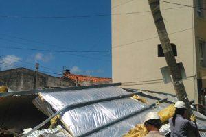 Defensa Civil registró la caída de 70 árboles
