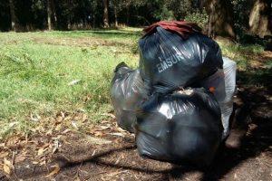 El Municipio recogió cerca de 300 kilos de residuos en la Laguna de los Padres