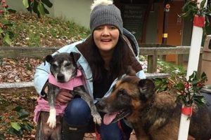 La mujer que cuida de perros moribundos y les da su último gran día