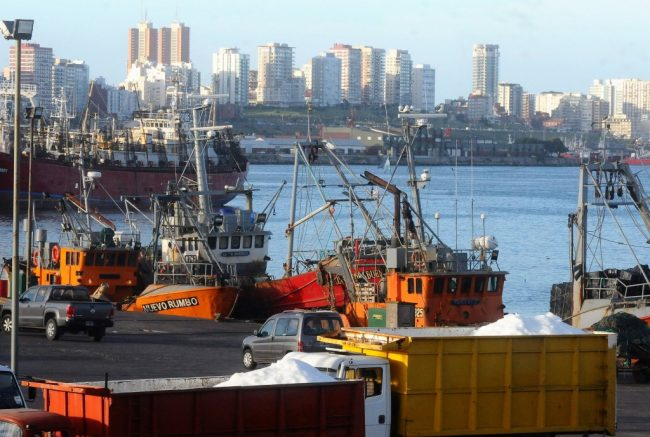 Mar del Plata y la pesca reflejan la decadencia de las políticas públicas en el manejo del sector