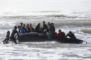 Liberaron a una orca que había quedado varada en Punta Mogotes