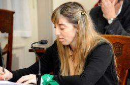 Tandil: Los concejales de la UCR presentaron un proyecto para estimular la producción domiciliaria de energía