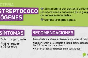 Estreptococo: la Provincia dio una serie de recomendaciones por los casos que se dieron en escuelas