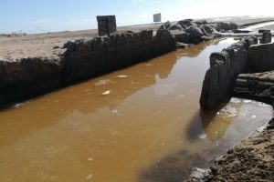 Escándalo en el Puerto Mar del Plata por más de 40 mil litros de desechos tóxicos