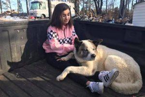 Un perro se reencontró con su familia luego de estar perdido durante 101 días