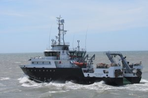 El Angelescu zarpó para evaluar merluza en la Zona Común de Pesca Argentino-Uruguaya