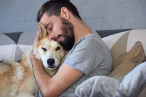 Para aliviar el estrés, recomiendan acariciar perros y gatos