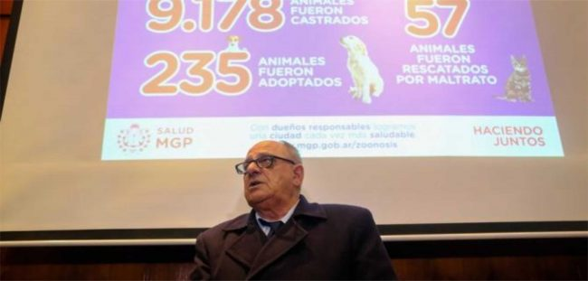 """Arroyo: """"No estamos en contra de los perros sólo queremos que los dueños sean responsables"""""""