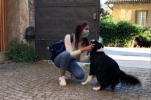 Conmovedor: el reencuentro de una chica y su perra tras dos meses de cuarentena
