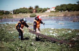 Se iniciaron tareas de limpieza en Parque Camet