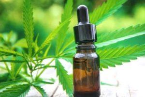 Estudian los efectos del cannabis sobre enfermos con Covid-19