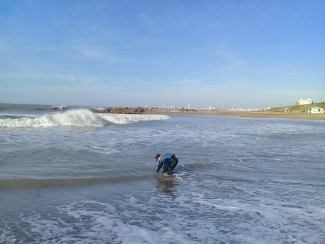 OSSE: Garantizan el agua de consumo y bañabilidad en playas