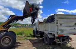 La Municipalidad recogió más de 300 toneladas de restos de poda